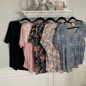 Lot of 5 Loft Short Sleeve Ttes: Size XL